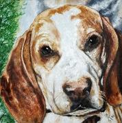 19) September 2012, Öl a. Lw., 60x60, Hund