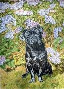 03)März,2020,Öl a.Lw.,120x90,My black Pug